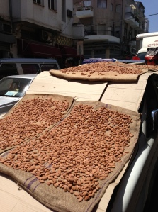 Drying peanuts on a car hood on Levinsky Street